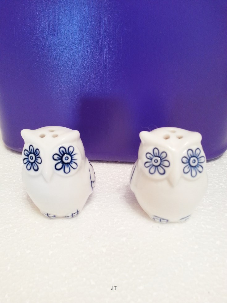 2 owl salt and pepper shakers