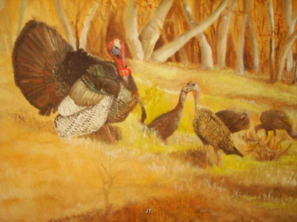 Gobbler and Hens