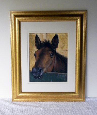 Horse Painting Inquisitive Foal- Framed Art-SOLD!