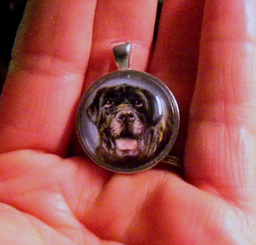 Custom Pet Portrait Pendant Necklace